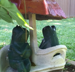 Nonny's Garden frogs enjoy the scenery