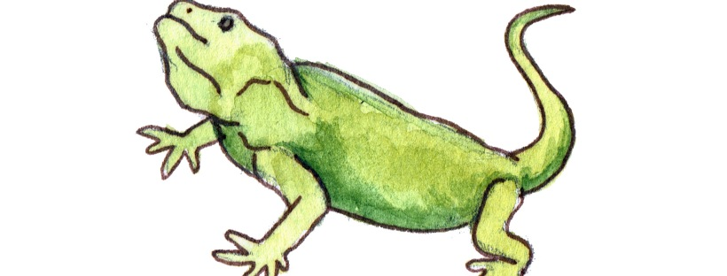 L is a Lazy Lizard - Illustrator: Courtney Coriell Williams